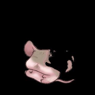 Mouse Grise