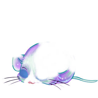 Adote um Mouse Arc-en-Ciel