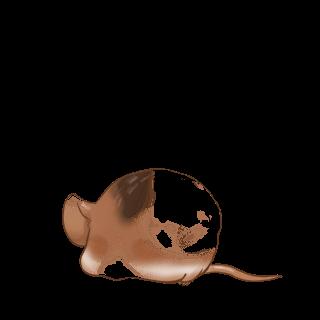 Adote um Mouse Prata