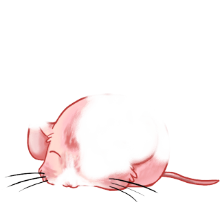 Mouse Valentine