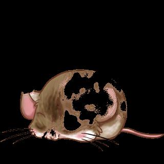 Mouse Foustache
