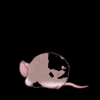 Mouse Husky Marron