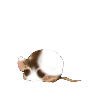 Adote um Mouse Perder