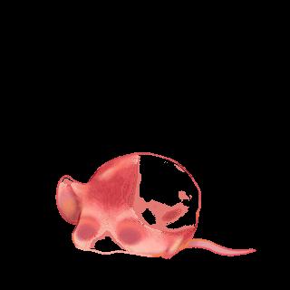 Mouse Pêche