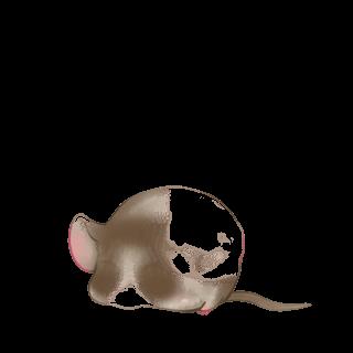 Mouse Cromimi