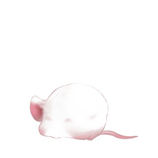 Mouse Beige
