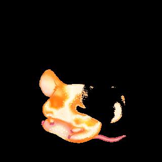 Adote um Mouse Suavidade