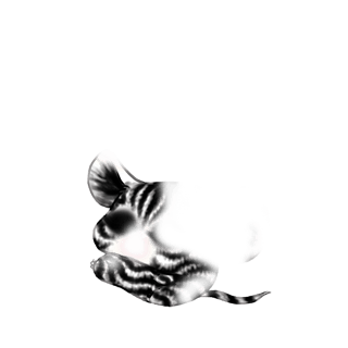 Adote um Mouse Esmeralda