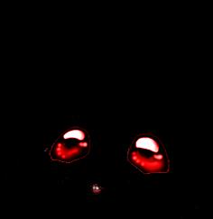 Mouse Souris Démon