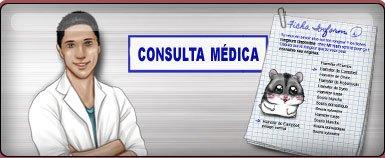 Consulte regularmente o veterinário: o gentil Dr. Ham